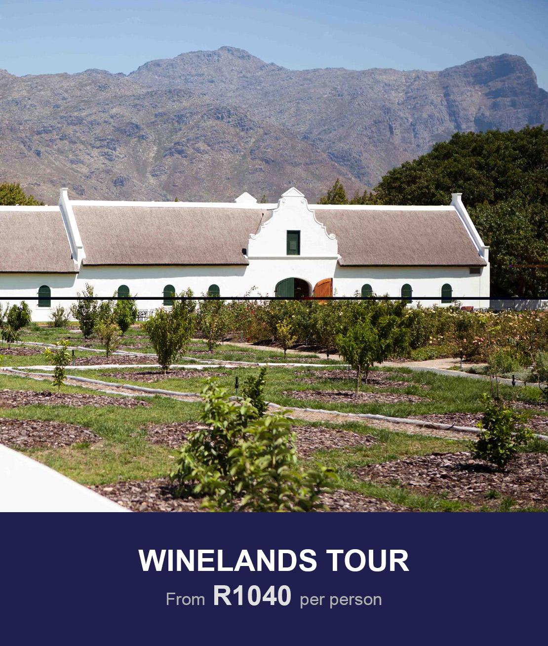 tours winelands cape town